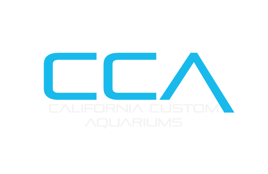 CA Custom Aquariums