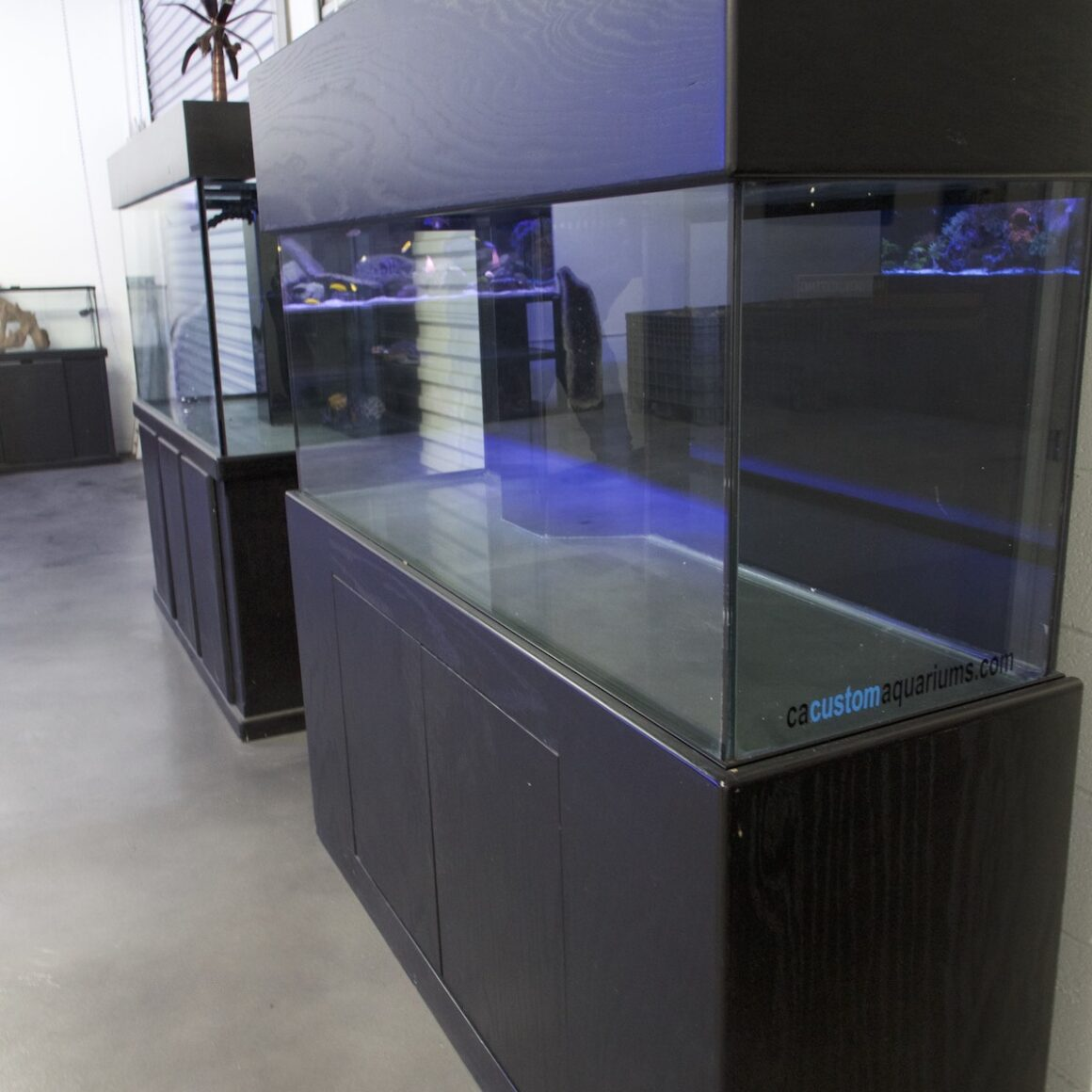 fish tanks for sale san diego custom aquariums with cabinets